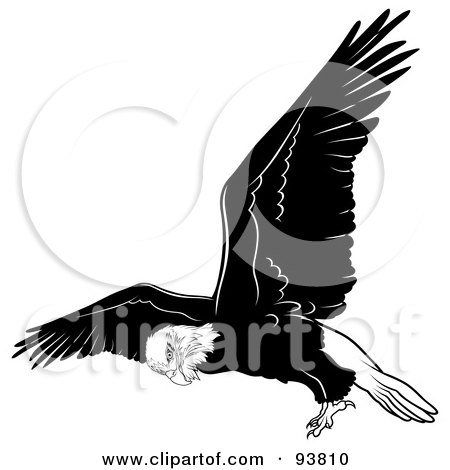 Royalty-Free (RF) Clipart Illustration of a Black And White Bald Eagle In Flight - 4 by dero