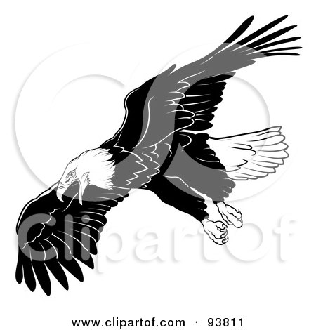 Royalty-Free (RF) Clipart Illustration of a Black And White Bald Eagle In Flight - 5 by dero