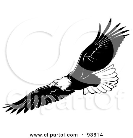 Clipart of a Black and White Flying Bald Eagle 4 - Royalty Free ...