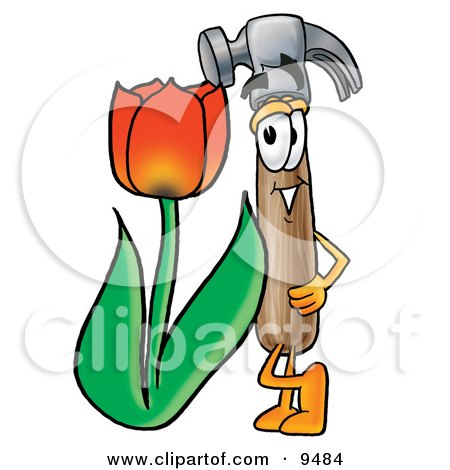 Hammer Mascot Cartoon Character With a Red Tulip Flower in the Spring Posters, Art Prints