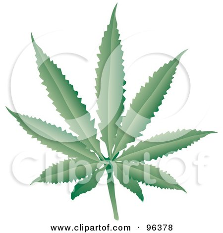 Royalty-Free (RF) Clipart Illustration of a Fresh Green Cannabis Leaf by Rasmussen Images