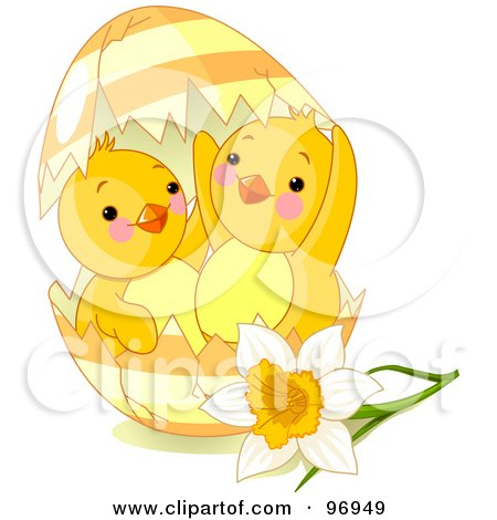 Royalty-Free (RF) Clipart Illustration of Two Cute Spring Chicks Peeking Out Of A Broken Easter Egg By A Daffodil by Pushkin
