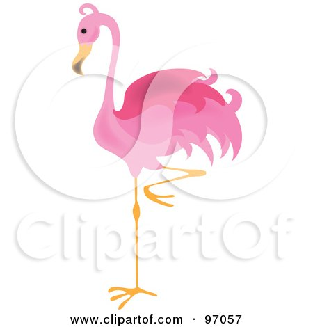 Royalty-Free (RF) Pink Flamingo Clipart, Illustrations, Vector ...