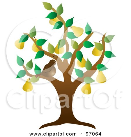 Royalty-Free (RF) Clipart Illustration of a Brown Partridge Bird In A Pear Tree by Pams Clipart