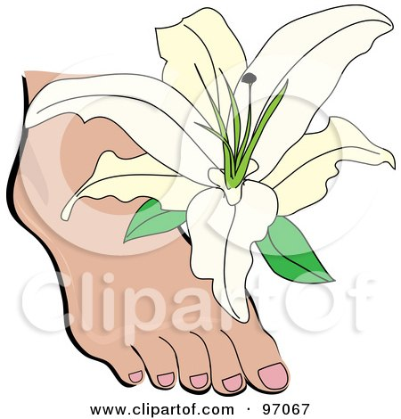 Royalty-Free (RF) Clipart Illustration of a White Lily Over A Foot by Pams Clipart
