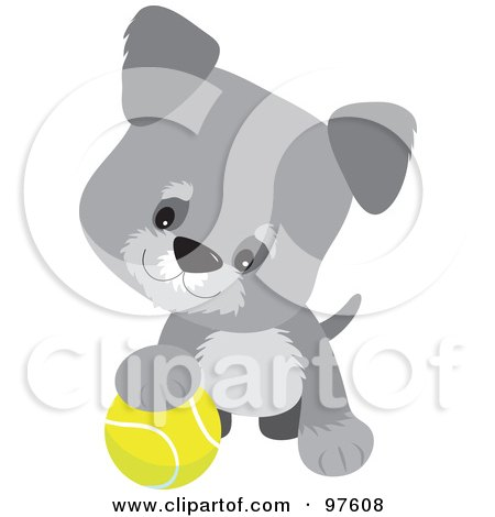 Royalty-Free (RF) Clipart Illustration of a Playful Gray Schnauzer Puppy Resting One Paw On A Tennis Ball by Maria Bell