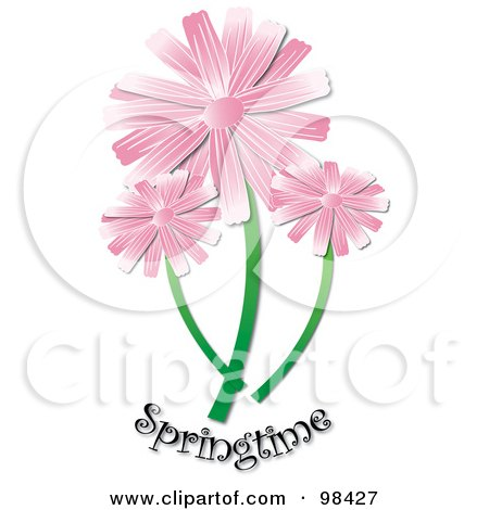 Royalty-Free (RF) Clipart Illustration of Three Pink Daisies Over Springtime Text by Pams Clipart