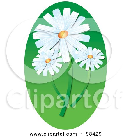 Royalty-Free (RF) Clipart Illustration of Three White Daisies Over A Green Oval by Pams Clipart