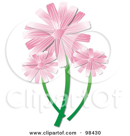 Royalty-Free (RF) Clipart Illustration of Three Pink Daisies by Pams Clipart