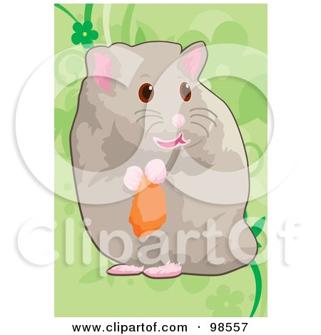 Royalty-Free (RF) Clipart Illustration of a Pet Hamster Holding Food by mayawizard101