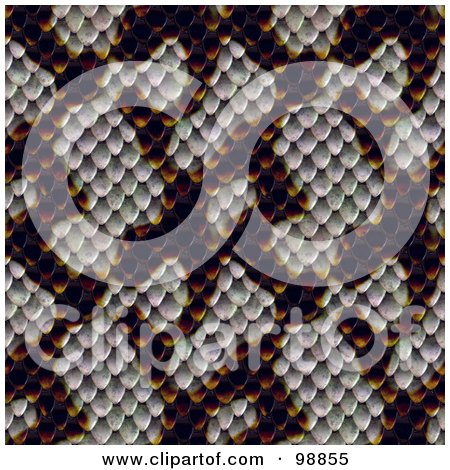 Royalty-Free (RF) Clipart Illustration of a Snake Skin Pattern Background by Arena Creative