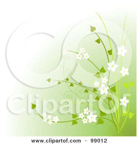 Royalty-Free (RF) Clipart Illustration of a Green Plant With White Flowers Over Gradient Green by Pushkin