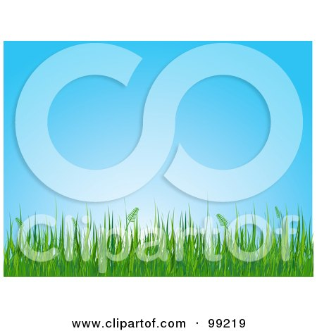 Royalty-Free (RF) Clipart Illustration of a Background Of Green Grasses Growing Tall Against A Blue Sky by Pushkin