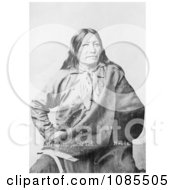 Spotted Tail A Brule American Indian Free Historical Stock Photography by JVPD