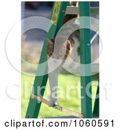 Stock Photo Of Cat Climbing Down A Ladder by Kenny G Adams