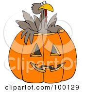 Turkey Bird Popping Out Of A Carved Halloween Pumpkin