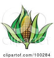 Royalty Free RF Clipart Illustration Of An Ear Of Corn With Green Foliage