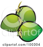 Royalty Free RF Clipart Illustration Of Three Coconuts