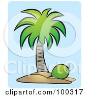 Royalty Free RF Clipart Illustration Of A Coconut Below A Tree by Lal Perera