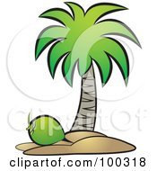Royalty Free RF Clipart Illustration Of A Green Coconut Below A Tree by Lal Perera
