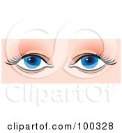 Royalty Free RF Clipart Illustration Of A Pair Of Eyes With Liner And Mascara On Lashes by Lal Perera