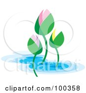 Royalty Free RF Clipart Illustration Of Colorful Lotus Buds