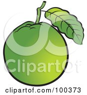 Royalty Free RF Clipart Illustration Of A Green Guava by Lal Perera