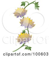 Lotus Vine With Yellow And Purple Flowers