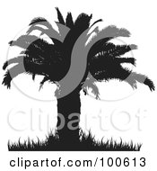Royalty Free RF Clipart Illustration Of A Silhouetted Palm Tree With A Thick Trunk And Foliage And Grass
