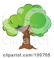 Royalty Free RF Clipart Illustration Of A Mature Old Tree With Thick Green Foliage by MilsiArt