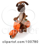 Royalty Free RF Clipart Illustration Of A 3d Brown Pooch Smiling And Riding A Scooter