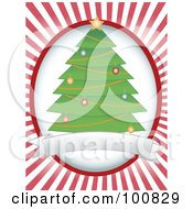 Trimmed Christmas Tree Label Over A White Oval And Red Rays