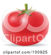 Royalty Free RF Clipart Illustration Of A 3d Realistic Red Tomato by cidepix