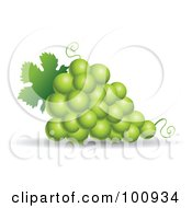 Royalty Free RF Clipart Illustration Of A 3d Realistic Green Grape Bundle by cidepix