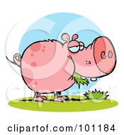 Royalty Free RF Clipart Illustration Of A Chubby Pink Pig Snacking On Grass