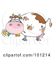 Royalty Free RF Clipart Illustration Of A Chubby Dairy Cow Snacking On A Flower
