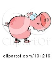 Royalty Free RF Clipart Illustration Of A Scared Pink Pig With An Open Mouth by Hit Toon