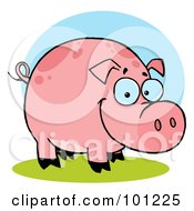 Royalty Free RF Clipart Illustration Of A Happy Farm Pig With Spots
