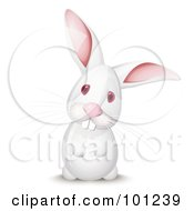Royalty Free RF Clipart Illustration Of A Curious White Rabbit Up On His Hind Legs His Head Cocked To The Side