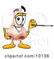 Clipart Picture Of A Nose Mascot Cartoon Character Holding A Pointer Stick by Toons4Biz