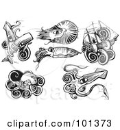 Digital Collage Of Six Engraved Styled Squids