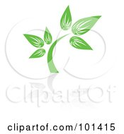 Royalty Free RF Clipart Illustration Of A Seedling Plant With A Reflection On White 2 by MilsiArt