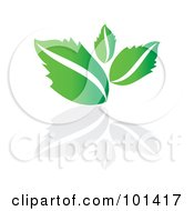 Royalty Free RF Clipart Illustration Of A Seedling Plant With A Reflection On White 4 by MilsiArt