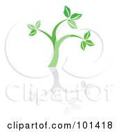 Royalty Free RF Clipart Illustration Of A Seedling Plant With A Reflection On White 5 by MilsiArt