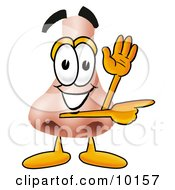 Clipart Picture Of A Nose Mascot Cartoon Character Waving And Pointing by Toons4Biz