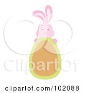 Pink Rabbit Behind A Brown And Green Easter Egg