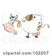 White And Brown Cow Eating A Daisy by Hit Toon