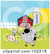 Spotted Gray Cow Eating A Daisy Near A Barn And Silo
