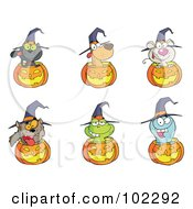 Royalty-Free (RF) Clipart Illustration of a Digital Collage Of Animals And Jack O Lanterns by Hit Toon