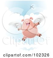 Skydiving Pig With Wings Strapped To His Back